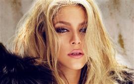 Aperçu fond d'écran Shakira 07