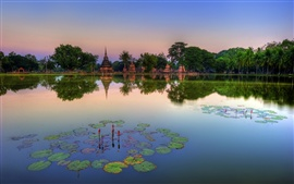 Preview wallpaper Sukhothai Historical Park, Thailand, lake, water lilies