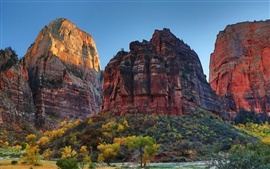 Zion National Park, Utah, USA, rock mountains, trees, nature
