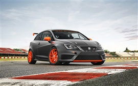Preview wallpaper 2013 SEAT Ibiza SC Trophy sports car