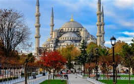 Preview wallpaper Blue Mosque, Sultan Ahmed Mosque, Istanbul, Turkey