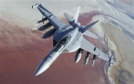 미리보기 배경 화면 보잉 EA-18G 그라 울러 전투기