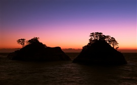 Japan, Shizuoka Prefecture, sea, rocks, trees, evening, sunset, purple sky