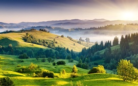 Preview wallpaper Nature landscape, sunrise, hills, trees, grass, fog