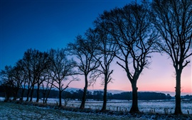 Noruega paisaje de invierno, árboles, campos, helada, amanecer mañana