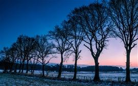 Норвегия зимнего пейзажа, деревья, поля, мороз, утренней зари
