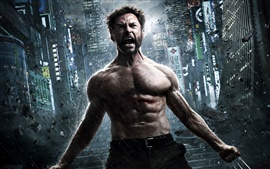 Preview wallpaper The Wolverine 2, movie 2013