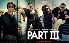 Preview wallpaper 2013 The Hangover Part III