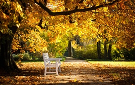 Preview wallpaper Autumn park, bench, yellow leaves