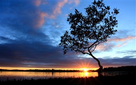 Beautiful nightfall scenery at river side, sunset, tree, sky, clouds