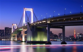 City night of Tokyo in Japan, bridge, buildings, lights