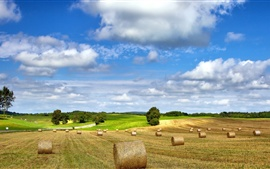 Farm field nature landscape, hay, summer, cloudy sky