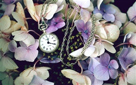Preview wallpaper Flowers with a watch