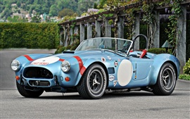 Ford Shelby Cobra Roadster 1964