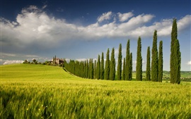 Preview wallpaper Italy, Campania, spring scenery, fields, tree, house, sky, green