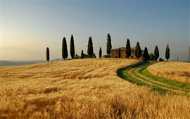 Preview wallpaper Italy, autumn landscape, wheat fields, trees, house