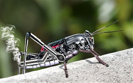Preview wallpaper Metal robot grasshopper