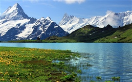 Preview wallpaper Switzerland, Bern, nature scenery, snowy mountains, river, grass, flowers