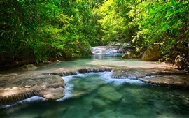 Thailand waterfalls, river, greenery, trees, leaves