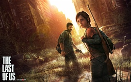 Preview wallpaper The Last of US game wide
