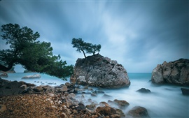France coast, trees, rocks, the Mediterranean sea, blue sky