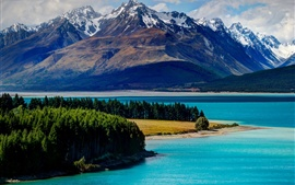 Lake Tekapo, New Zealand, mountains, forest, trees