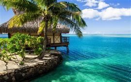 Maldives, cabane, palmier, l'eau de mer