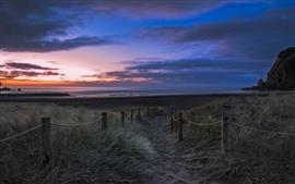 Новой Зеландии, пляж, трава, закат