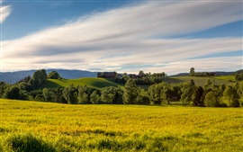 Preview wallpaper Norway summer fields, meadow, trees, hills, sky