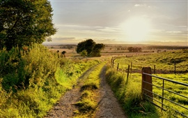 Preview wallpaper Summer nature scenery, road, trees, fence, grass, sun