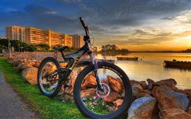 City, coast, bike, sunset