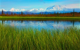 Denali National Park spring scenery, lake, mountains