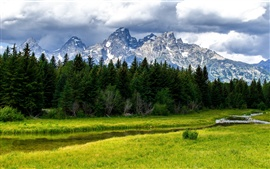 Preview wallpaper Grand Teton National Park, mountains, forest, trees, creek