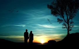 Romantic evening, couples, trees, birds, sunset, silhouette