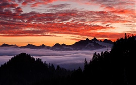 USA, Oregon, mountainous, forest, sky, sunset