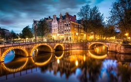 Preview wallpaper Amsterdam, Nederland, city, evening, lights, river, bridge, houses, trees