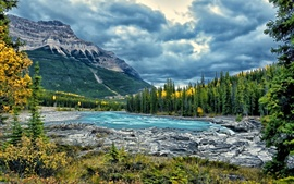Preview wallpaper Athabasca River, Jasper National Park, Alberta, Canada, trees