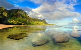 Preview wallpaper Beach seascape, coral reef underwater, Kauai