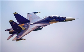Preview wallpaper Su-30 fighter 2013