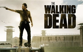 Preview wallpaper The Walking Dead 2013