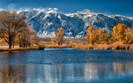 Preview wallpaper Autumn, snow mountains, yellow leaves trees, lake