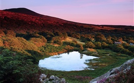 Britain, Wales, dusk, hills, trees, lake