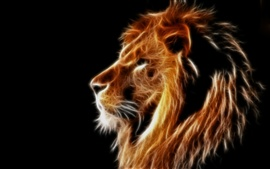Creative design, light lion, mane, black background