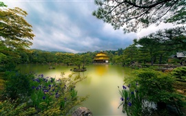 Golden Pavilion temple, Kyoto, Japan, lake, trees, flowers, park
