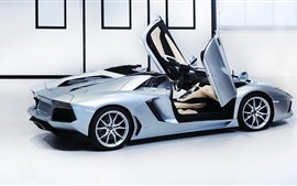 Preview wallpaper Lamborghini Aventador LP700-4 Roadster supercar, blue, doors opened