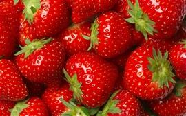 Muchas fresas, rojo, fruta, delicioso
