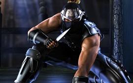Ninja Gaiden, knife, night