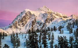 North America, Washington, Mount Shuksan, snow, winter, trees, dusk