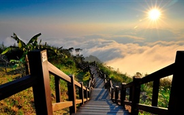 Taiwan landscape, mountain top, wood stairs, sun