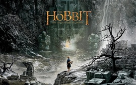 Preview wallpaper The Hobbit: The Desolation of Smaug 2013